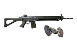 SIG 550 / 551